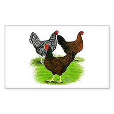 Dark Brown Egg Hens Decal