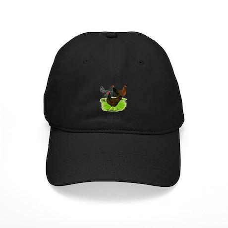 Dark Brown Egg Hens Black Cap