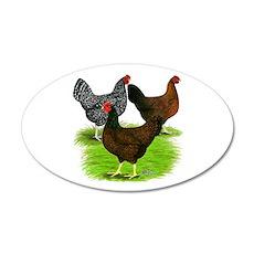 Dark Brown Egg Hens 22x14 Oval Wall Peel