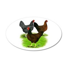 Dark Brown Egg Hens 22x14 Oval Wall Peel