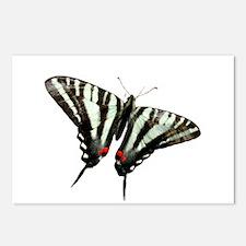 Zebra Swallowtail butterfly Postcards (Package of