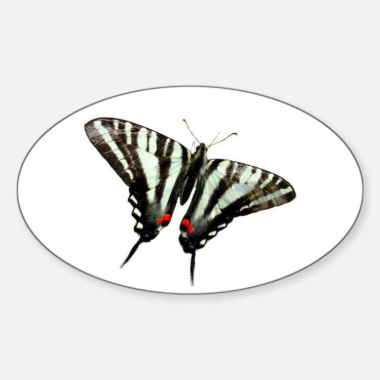Zebra Swallowtail butterfly Oval Decal