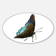 Red Spotted Purple Butterfly Oval Decal