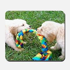 Golden Retriever Puppies Mousepad