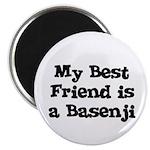 My Best Friend is a Basenji 2.25