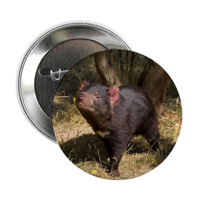 Tasmanian Devil Button By Dcrimages