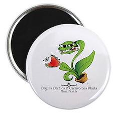 "Orgel's Orchids 2.25"" Magnet (10 pack)"