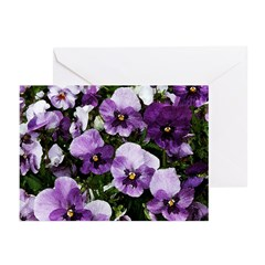 Pansies After a Rain Greeting Cards (Pk of 10)