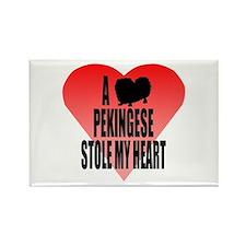 Pekingese Rectangle Magnet (100 pack)