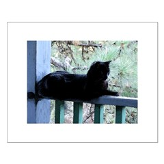 Black Cat on the Porch Posters