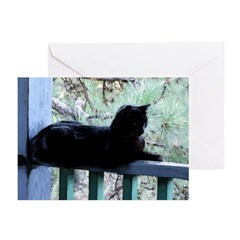 Black Cat on the Porch Greeting Cards (Pk of 10)