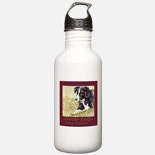 Border Collie Beauty & Brains Water Bottle