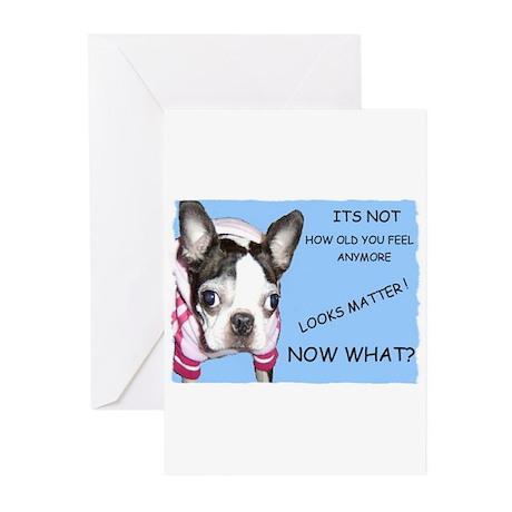 HUMOROUS Greeting Cards (Pk of 10)