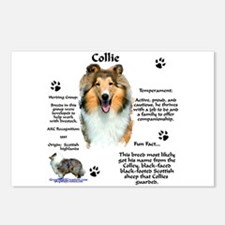 Collie 1 Postcards (Package of 8)