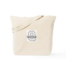 Letter Q: Qatar Tote Bag