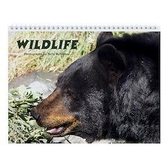 Wildlife Photography Wall Calendar