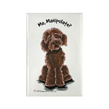 Chocolate Labradoodle Manipulate Rectangle Magnet
