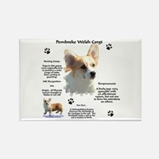 Corgi 1 Rectangle Magnet