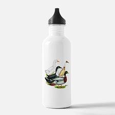 Duck Quartet Water Bottle