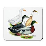 Duck Quartet Mousepad