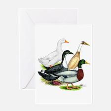 Duck Quartet Greeting Card