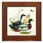 Duck Quartet Framed Tile