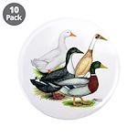 "Duck Quartet 3.5"" Button (10 pack)"