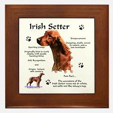 Irish Setter 1 Framed Tile