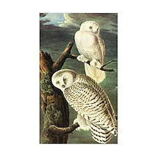 Audubon Fine Art Decal