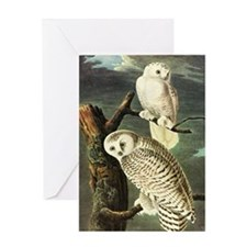 Audubon Fine Art Greeting Card