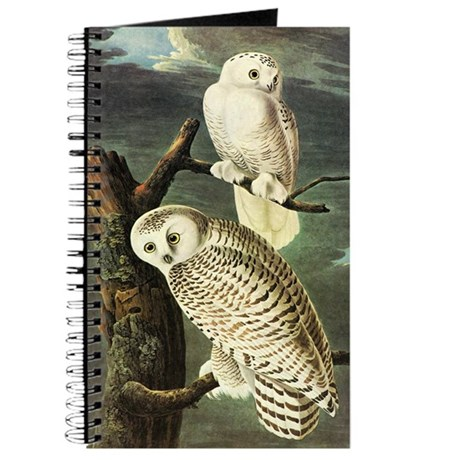 Audubon Fine Art Journal