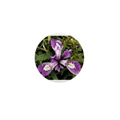 Pacific Coast Iris Mini Button