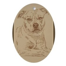 American Pit Bull Terrier Ornament (Oval)