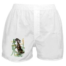 The Year Of The Rabbit Boxer Shorts