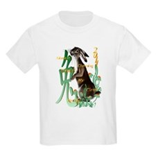 The Year Of The Rabbit T-Shirt
