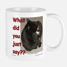 What Did You Just Say?? Mug