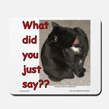 What Did You Just Say?? Mousepad