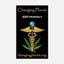 Changing Planet Decal