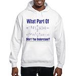 What part of Riemann's? Hooded Sweatshirt