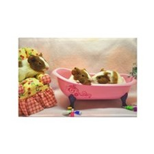 Baby Pig Bath Time Rectangle Magnet