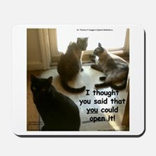 Open The Door? Mousepad