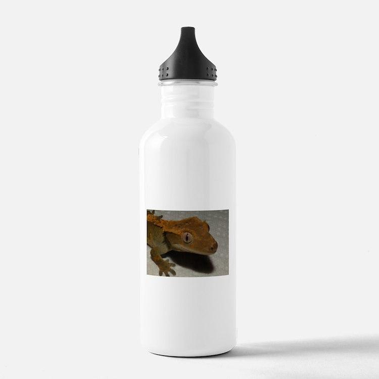 Cute Gecko Water Bottle