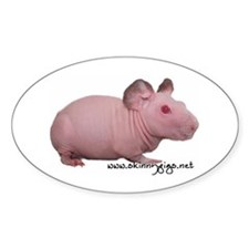 Skinny Pig Decal