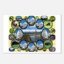 Yellowstone Park Postcards (Package of 8)