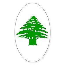 Green Cedar Tree Oval Decal
