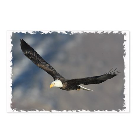 Wing Tips Only Postcards (Package of 8)