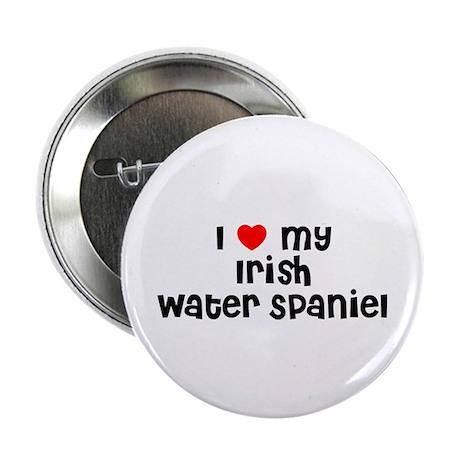 I * my Irish Water Spaniel Button