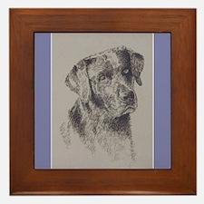 Black Labrador Retriever Framed Tile