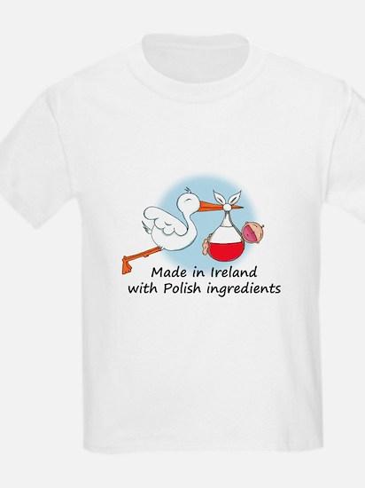 Stork Baby Poland Ireland T-Shirt