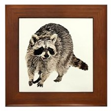 Racoon Plain Framed Tile